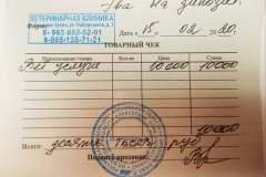 Эва-ветклиника-чек-15_02_2020
